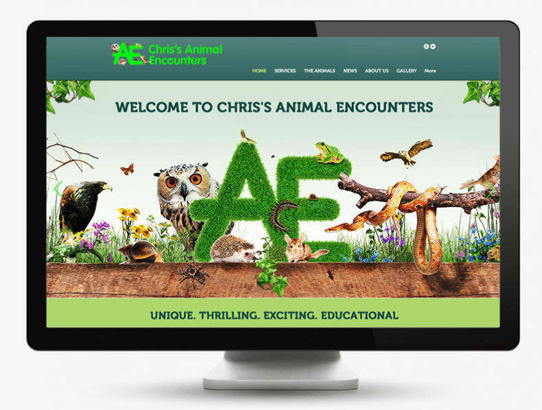 Animal Encounters branding and website