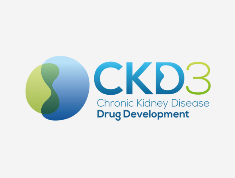 Hansonwade: Chromic Kidney Diesease Drug Development branding and materials
