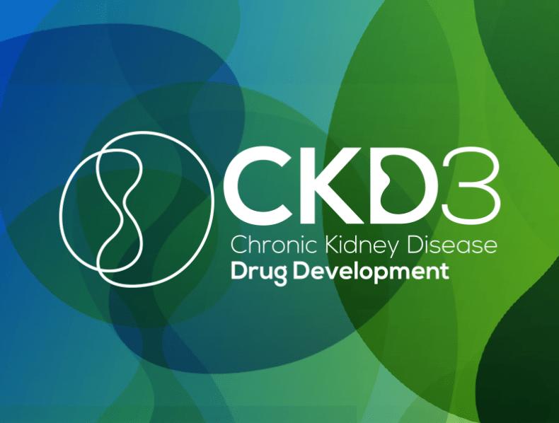 Hansonwade: Chromic Kidney Diesease Drug Development branding and materials