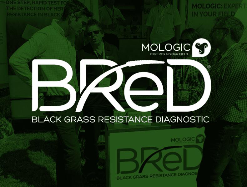 Branding a Blackgrass resistance diagnostic for Mologic and Newcastle University